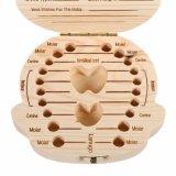 Venta caliente Caja de dientes de Madera Sólida caja de regalo para bebés