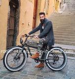 2018 [250/500ويث750و] غلّة كرم طرّاد درّاجة/طرّاد كلاسيكيّة درّاجة كهربائيّة/شاطئ طرّاد درّاجة كهربائيّة سمين/حنين [بدلك] سمين/[رترو] [بدلك] بيضاء جدار إطار العجلة