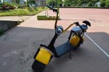 手棒が付いている1000W電動機のスクーター