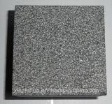 G684 자연적인 까만 화강암 도와/석판 /Cube