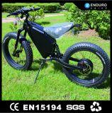 중국 사람 제조에서 새로운 형식 5000W 함 뚱뚱한 자전거
