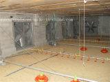 Exaustor do equipamento da ventilação das aves domésticas da exploração agrícola para a venda em Malaysia