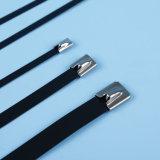 Fascetta ferma-cavo rivestita dell'acciaio inossidabile del PVC della fascetta ferma-cavo rivestita Semi-A resina epossidica dell'acciaio inossidabile del campione libero