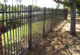 Jardin noir de piquet clôturant avec la qualité