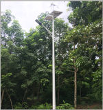 IP65 태양 가로등에 있는 전등 기둥 6m-12m 잡종 태양풍 관제사