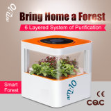 Am: 10 Smart-Forest Purificador de Ar de Desktop Ecológica Mf-S-8600-X