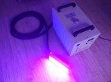 LED Portátil Secador UV para tinta UV de curado de pegamento UV