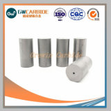 Matrijzen van de Rubriek van het Carbide van het wolfram de Koude/de Matrijzen Yg15c, Yg20c, Yg25c van de Stempel van het Carbide