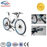 E-Bike с высокоскоростным легковесом