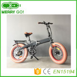 vélos se pliants électriques de la Chine E de vélos de gros pneu de 48V 500W Ebikes avec 32km/H