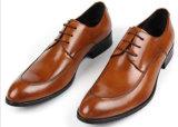 人の服の形式的な革バックルの修道士ストラップの靴