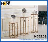 Mesa de centro moderna del metal de los muebles con el vidrio (HC2347)