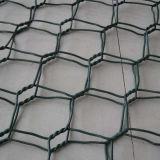 Окунутая гальванизированная шестиугольная ячеистая сеть для загородки зверинца