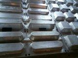Molde plástico de la bandeja del huevo de la espuma de las piezas de la máquina del molde del rectángulo de almuerzo