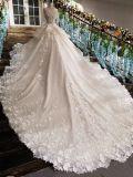 Aolanes устраивающих Зал торговых марок свадебные платья
