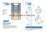 ステンレス鋼のホーム上昇の乗客のエレベーター