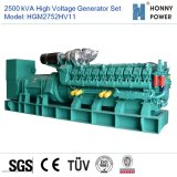 Googol Engine 50Hz를 가진 3000kVA High Voltage Generator Set 10-11kv