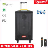 Feiyang/Temeisheng/Kvg de Draagbare Navulbare Spreker Bluetooth van Systembig van de Karaoke Krachtige met 2 UHFMic--Qx-1214