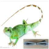 도마뱀을%s 실리콘 파충류 난방 케이블