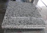 Het Bedekken van de Voorzijde van het Graniet van de Steen van het Graniet van Bala Witte Natuurlijke Witte Tegels