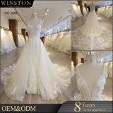 2018のレースの花嫁衣装のV首の尻振り滑空の背部が開いたウェディングドレス