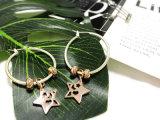 로즈 실제적인 금은 2개의 음색 형식 Daliy 별 원형 귀걸이를 도금했다