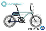 Bicyclette électrique en aluminium de pouvoir vert avec la batterie 36V détachable