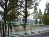 Blanc de clôtures de jardin résidentiel simple d'acier 18-5