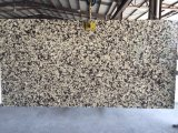 Mv LF-C005/de Plak van het Kwarts voor Keuken/Badkamers/Muur/Vloer