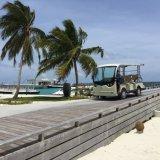 Сертифицирована ISO 11 лицо туристический автобус (Lt-S11)