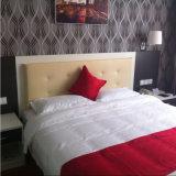 لوحة رأسيّة ينجّد [هوليدي ينّ] فندق غرفة نوم أثاث لازم