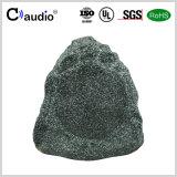 6.5 altoparlante esterno di PA della pietra del giardino dell'altoparlante di modo di pollice 2