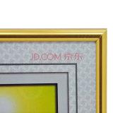 壁に取り付けられた大きい金銀製カラープラスチック写真フレームE1008