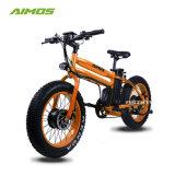20 pulgadas neumático Fat bicicleta eléctrica de alta calidad con precio competitivo