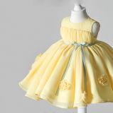 Желтые мантии девушки цветка Organza