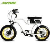 20 pouces 48V 750W Fat pneu vélo électrique avec double siège
