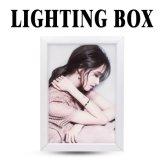 Boîte à lumière LED de taille différente pour LED signe de la publicité