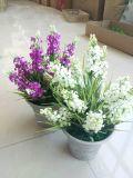 Flores artificiales de la lavanda Gu916215246