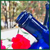 10 van de Donkerblauwe 19mm Vrouwelijke Gezamenlijke duim Pijp van het Glas Rokende