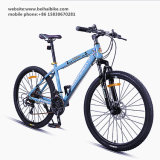 Bicicleta barata del camino del acero de carbón