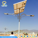 LED太陽動力を与えられたライト6mポーランド人30Wデザイン