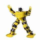17dof singen Humanoid Zweifüßlerroboter mit freier APP, Baugruppe MP3, ausführlicher video Referentensupport Tanzhumanoid-Roboter
