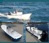 Liya 판매를 위한 배 14-25 피트 섬유유리 어선 Panga