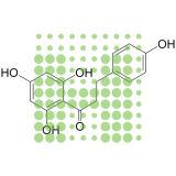 Qualität Phloretin