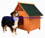 Doghole (QZD9006)