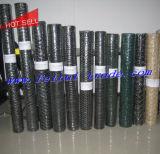 Темноты покрынной мелкоячеистая сетка PVC - зеленая или черная