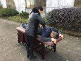 Tabella stazionaria di massaggio con il Governo e la base di bellezza