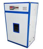 Contrôleur complètement automatique d'humidité de la température d'incubateur d'oeufs de poulet au Nigéria