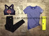 Terno de esportes rapidamente seco para mulheres / Lady, Fitness Wear, Running Wear