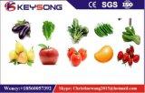 La verdura fruttifica linea di produzione di pulizia